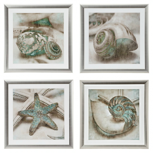 4 seashell frames set