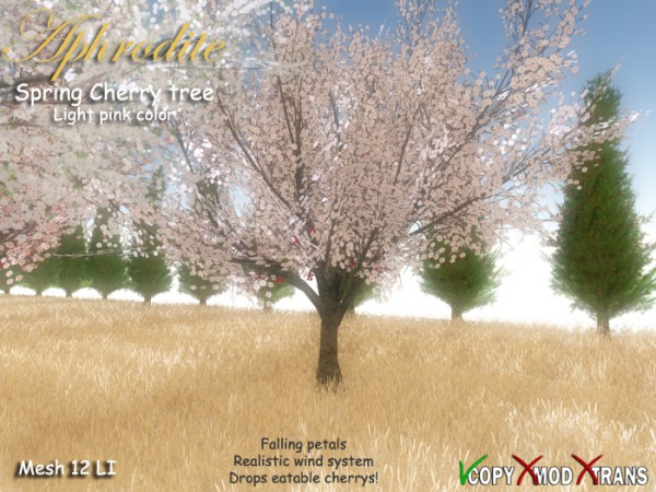 Aphrodite  Spring Cherry Tree Light pink color