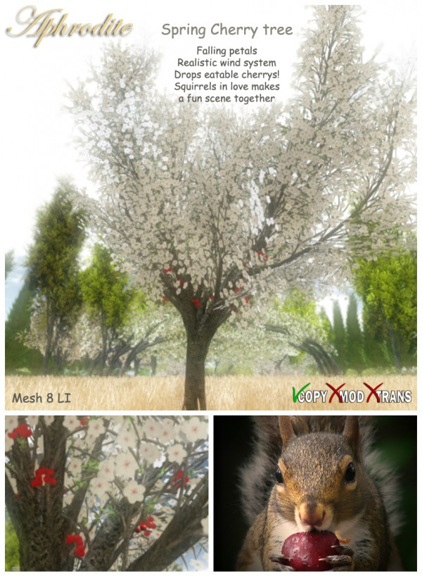Aphrodite Spring Cherry- White color- Loving squirrels animated tree